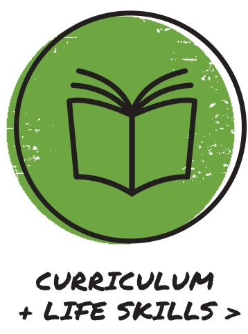 Computer Skills Icon Download Curriculum Vitae Icons